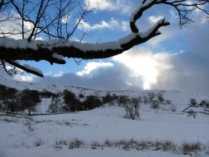 Winter Light Ambleside