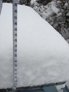 Snowfall in Ambleside